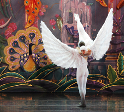 moscow-ballet's-2-person-dove-of-peace