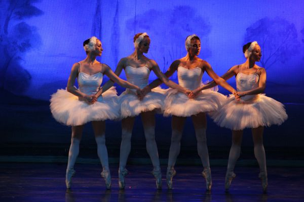 the little swans moscow ballet