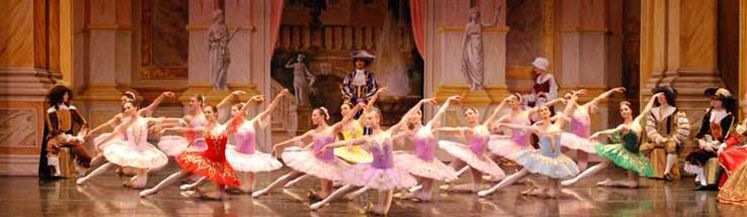 sleeping beauty repertoire video